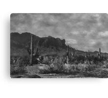 Raw Lands Canvas Print