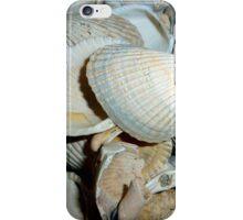 My New Shells iPhone Case/Skin