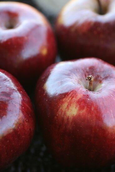 Apple Fresh by Joy Watson