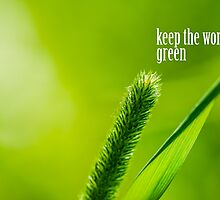 Green Grass And Sun - Keep the world green by luckypixel