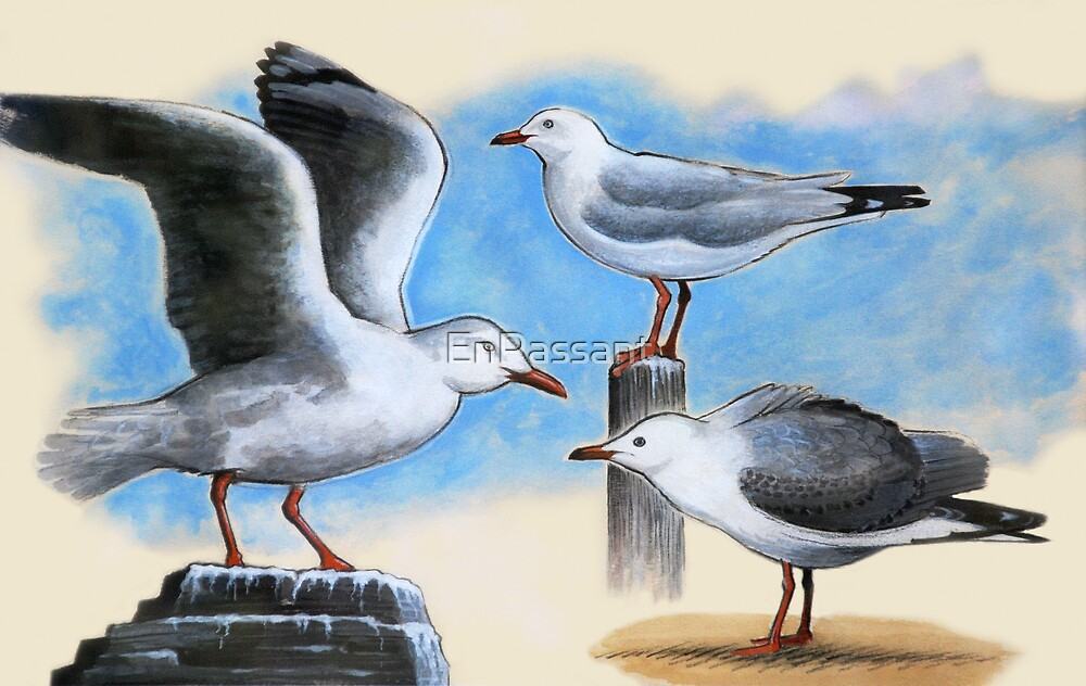 Silver Gulls 2 by EnPassant