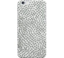 Daisy Field Forever iPhone Case/Skin