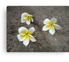 Fallen Thai Blooms Metal Print