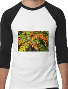 Autumn is a Painter #2, Haywards Heath, England Men's Baseball ¾ T-Shirt