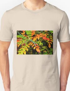 Autumn is a Painter #2, Haywards Heath, England Unisex T-Shirt