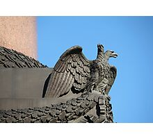 Double-headed eagle spread its wings Photographic Print