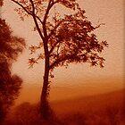 Red Dawn by Linda Sannuti