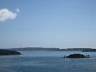 Sunday Morning From Elizabeth Bay by John Douglas