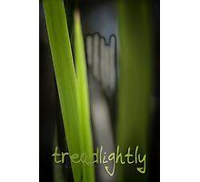 Tread Lightly © Vicki Ferrari Photographic Print