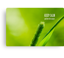 Green Grass And Sun - Keep calm and love the Nature Canvas Print