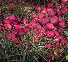 Red Apples by Yuri Lev