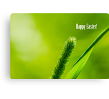 Green Grass And Sun - Happy Easter! Canvas Print