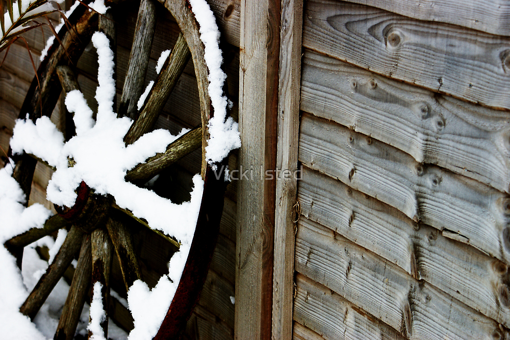 Cart Wheel by Vicki Isted