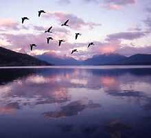 Geese Over Glacier Park by Wayne King