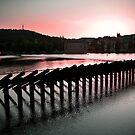 Still Dawn by Tristan Rayner
