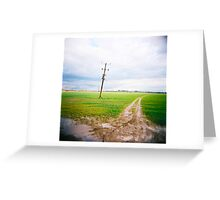 cold day, wet field Greeting Card