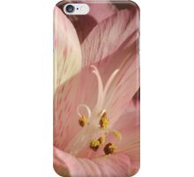 Pink Lily Easter Card iPhone Case/Skin