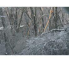 Ice Storm Photographic Print