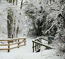 Little Snow Bridge by lisamaria