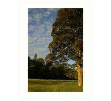 Langholm Park Art Print