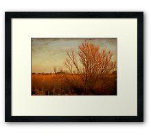 Orange winter Framed Print