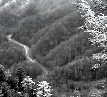 Smokey Mountain Road by photocracy