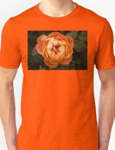 Colours of Summer (1) Unisex T-Shirt