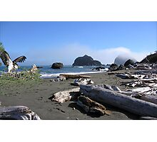 1125A-Under Mama's Care in Flotsam Beach Photographic Print