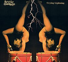 Crying Lightnight Arctic Monkey's Album by dnymntng