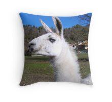 Graceful llama  Throw Pillow