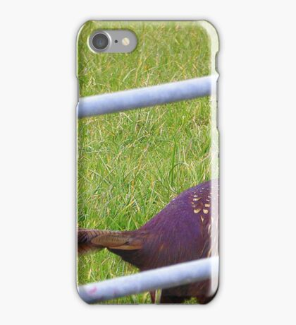 The Cock Pheasant iPhone Case/Skin