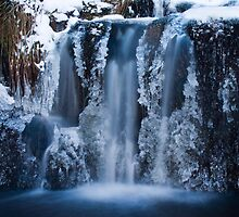 Frozen Falls by Thomas Fitzgerald