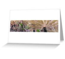cycad Greeting Card