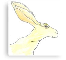 Jack Rabbit Canvas Print