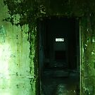 Cane Hill Mental Asylum - Solitary Cell 2 by hiddenforests