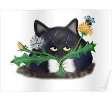 Dandelion Clump and Kitten Poster