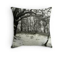 Snow Arch Throw Pillow