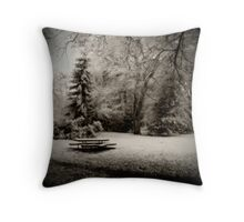 Cold Park Throw Pillow