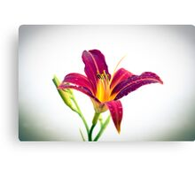 A Smile from Nature Canvas Print