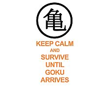 Keep calm until goku arrives Photographic Print