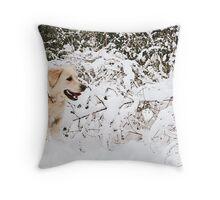 Sheer Joy Throw Pillow