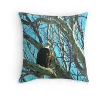 020609-73  BALD EAGLE Throw Pillow