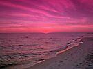 In Pink by Sandy Keeton