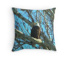 020609-57  BALD EAGLE II Throw Pillow