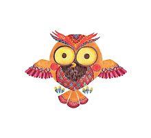 The Outstanding Owl by haidishabrina