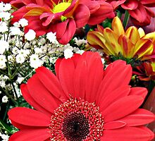 Vibrant Red Gerbera Daisies and Dahlias by MidnightMelody
