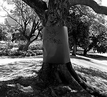 Love Tree by Tristan Davies