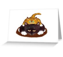 Tiger Kitten sits on Tuxedo Cat Greeting Card