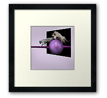 White tigers Escape Framed Print