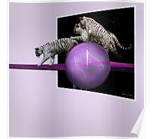 White tigers Escape Poster